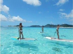 [沖繩名護]初學者只有塞普體驗!巡航在西海岸♪美麗的珊瑚礁