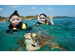 [Okinawa Miyakojima] 100% sea turtle snorkel & power spot cave exploration & lunch! pay by a credit card