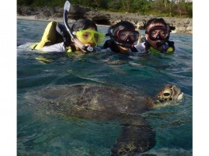 【Okinawa · Miyakojima】 4 sea marine at the beach beach + 100% encounter rate sea turtle and snorkel group allotment! Card payment