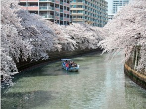 【Tennozu ship】 Meguro River Cherry Blossom Cruise Private Cruise - Prepare a cherry-blossom viewing seat and a special seating for the water ~ 【11900】