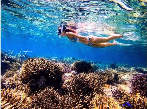 【沖縄・石垣島】トロピカルなビーチから冒険!シュノーケル、スキンダイビング、地形、見釣り…♪選べる冒険☆写真・動画プレゼント♪