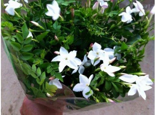 【千葉・銚子】初夏~初冬  ジャスミンの花を摘み取り、香りのブーケを作ろう!