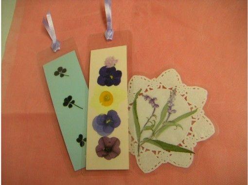 【千葉・銚子】押し花体験、選べる3コースプラン!小さなお子様からご年配の方まで楽しめます!