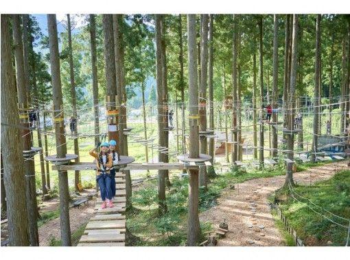樹野餐冒險池田