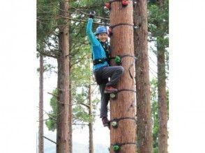 【福井・池田町】木登りやジャイアントスイングを体験!ツリークライムコース