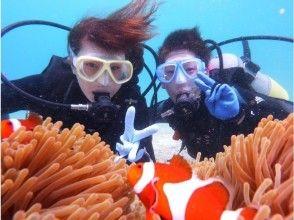 [沖繩恩納]魚的觀察體驗潛水