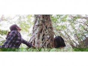 【鹿児島・奄美大島】mini-day(4)パワースポット3箇所巡り(3時間)
