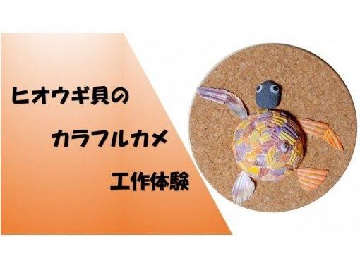 ヒオウギ貝のカラフルカメ工作