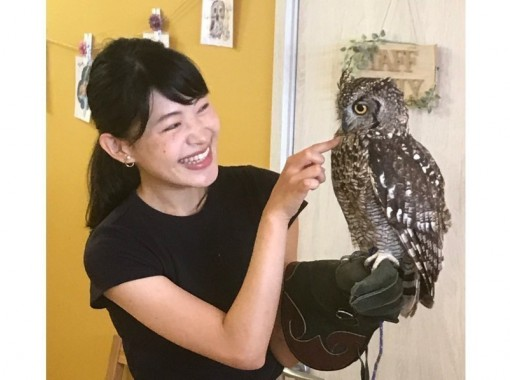 [Wakayama /Iwade City] Experience the interaction at the Owl Cafe! Easy admission only plan (1 hour)の紹介画像