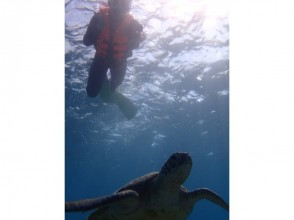 【Okinawa · Miyakojima】 Beach Snorkel ★ WEB Limited ★ Popular No. 1! Sea turtle and two shot pictures (limited to 3 pairs a day)