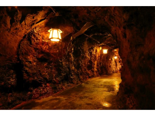 [Wakayama / Shirahama] Experience to meet nature and history! Sea erosion cave exploration tour spreading 36 meters underground!の紹介画像