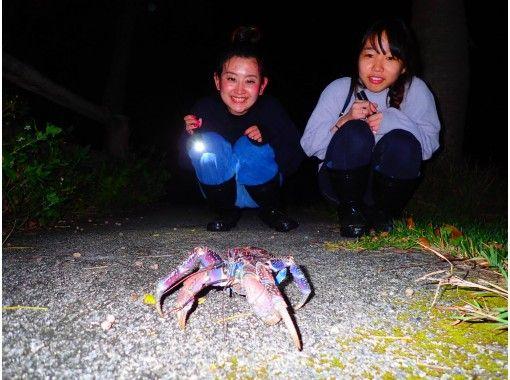 "[Okinawa / Ishigaki island] ①Regional common coupon OK! [Night] Natural planetarium! Starry sky & subtropical ""Jungle Night tour ""On the day reservation OK!の紹介画像"