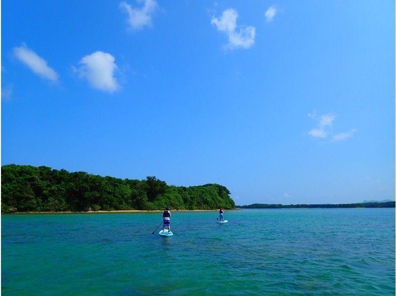 Iriomote Island ผจญภัย PiPi แนะนำ