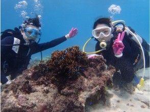 【沖縄・宮古島】ビーチ体験ダイビング♪  海中世界の虜になろう  2本潜る半日プラン