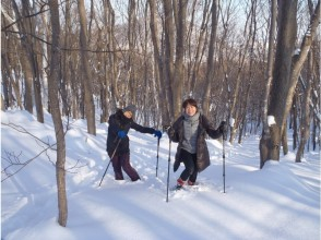 【北海道・札幌】中心部から車で30分の自然体感エコツアー!スノーシューを履いて歩こう!の画像