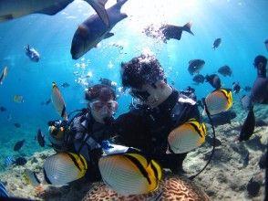 츄라 우미 수족관 근처 고리라 톳 체험 다이빙