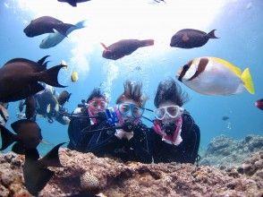 【沖縄・青の洞窟・体験ダイビング】追加費用一切無し&完全貸切!超高画質動画&写真を枚数無制限でプレゼント。