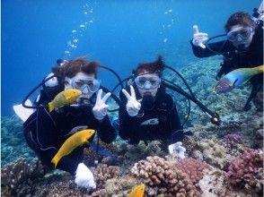 【沖縄県・本部町】初めての方も安心!水納島でボート体験ダイビング!
