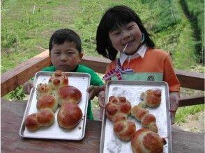 [阿苏市熊本县]自制石窑面包-从成型到烘烤参与4岁就可以了!