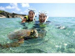 [沖縄/宮古島] 98%以上遭遇率! /浮潛之旅,與海龜一起游泳!淋浴間和吹風機♡
