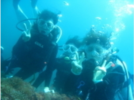 【静岡・伊豆】気軽に簡単に!体験ダイビング