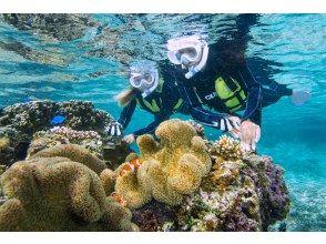 [沖縄宮古島] 3歲起就可以♪浮潛之旅,享受珊瑚和魚類!淋浴間和吹風機♡