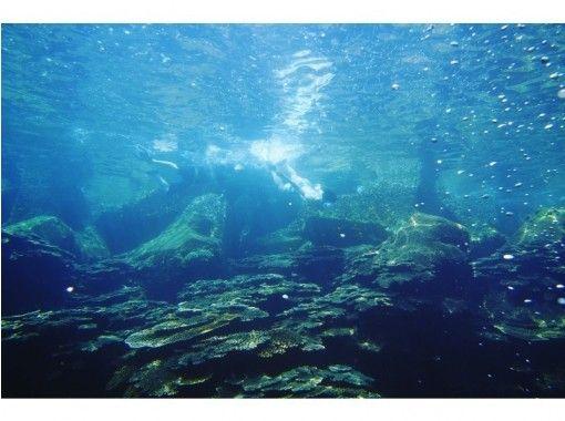 【高知・鵜来島】絶景離島鵜来島でシュノーケル&堤防釣り(又はシーカヤック)三食付き一泊プラン