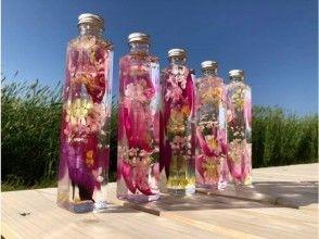 【山陰・大根島】華やかな色彩!日本一の牡丹を使ってハーバリウム作り