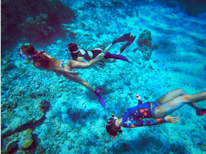[Okinawa / Miyakojima] Regional common Use a coupon be used! Go by boat! Snorkeling July-Oct. Limited time camera Rental available!