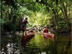 【沖繩·西表島】Kayak&Sawa徒步旅行