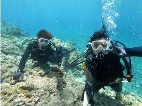 【沖縄本島、北部】セットでお得♪スタンドアップパドルと水中を楽しむ体験ダイビングのセットメニュー☆