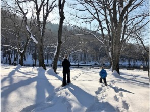 "<Furano> Half day snowshoe experience · Tori Numa Park walking course ☆ Easily experience ""Enjoying winter · Playing with snow"" ☆"