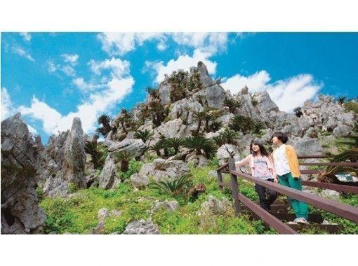 【오키나와 · 나하발】 오키나와 츄라우미수족관과 헤도미사키(辺戸岬)다이세키림잔(大石林山)등산 버스투어 (C 코스)の紹介画像
