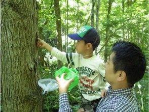 【北海道・富良野】大自然の中で昆虫採取!取った昆虫はケースに入れてお持ち帰り!1組様限定で安心