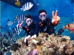 【沖縄・青の洞窟ダイビング・ビーチプラン】★写真と動画無料★プロ仕様の高画質カメラで想い出色鮮やか♪