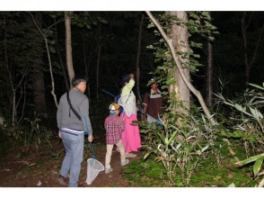 【北海道・ニセコ】ニセコの森の中へ色々な生き物を探しに冒険に出かけよう!「夜の森冒険ツアー」