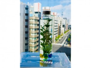 【東京・日本橋】アーティフィシャルフラワーで作るハーバリウム【フラワーアレンジメント】