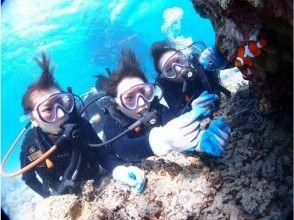 【沖縄・恩納村・体験ダイビング】クマノミ体験ダイビング 高画質な写真や動画をすぐにスマホへお届け★