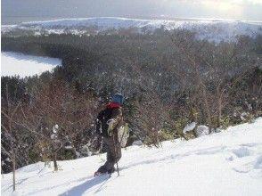 【北海道・利尻】ガイド同行!スノーシュー冬の島ガイドチャーター(半日コース)の画像