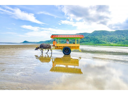 "[Okinawa / Iriomote Island] ⑤Regional common coupon OK! [1st] Aim for ""Lucky Waterfall""! Selectable SUPor canoe & Yubu Island sightseeing [Yubu Island Ticket included]の紹介画像"