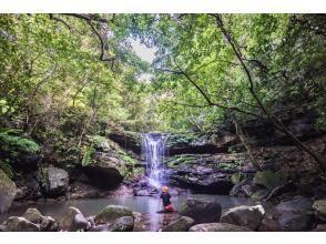 "[Okinawa / Iriomote Island] ⑤Regional common coupon OK! [1st] Aim for ""Lucky Waterfall""! Selectable SUPor canoe & Yubu Island sightseeing [Yubu Island Ticket included]"