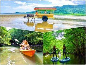 【西表岛/1日】充满偏远岛屿的魅力!由布岛观光和世界遗产,红树林SU或独木舟从西表岛选择[照片数据免费]