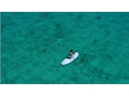 【沖縄・石垣島】国立公園の大自然でのサップヨガ&サップ・デイタイムプラン