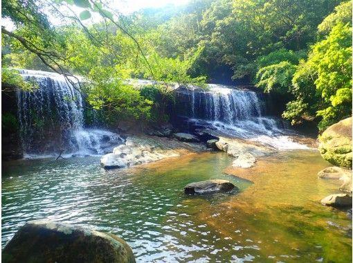 【沖縄・西表島】【半日】秘境・サンガラの滝を目指せ!選べるマングローブSUPorカヌーツアー!