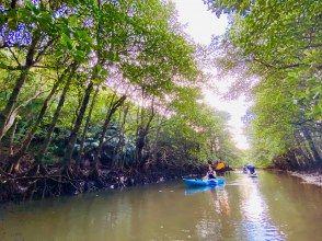 [Okinawa / Iriomote Island] ⑩ Regional common coupon OK! [Popular] Mangrove SUPor Canoe & Barasu Island Snorkel [free photo data]