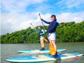 【石垣岛/半天】⑥从初学者到有经验的人! SUor独木舟体验之旅,您可以选择天然纪念物的红树林[照片数据免费]