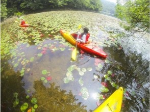 "【 Tottori · Uratomi coast 】 Enjoy the four seasons! Oasis of sand dunes ""Polyke Pond"" Kayak experience ♪"