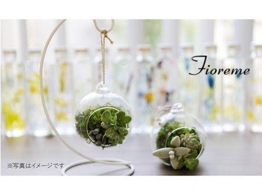 【東京・中央区】今流行の緑のインテリア 苔玉orテラリウムの作成体験レッスン【22534】