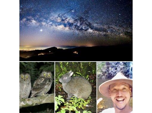 【【鹿児島・奄美大島】神秘の森のクロウサギナイトツアー!遭遇率100%継続!満天の星空の冒険ツアー・安心の貸切ツアー!