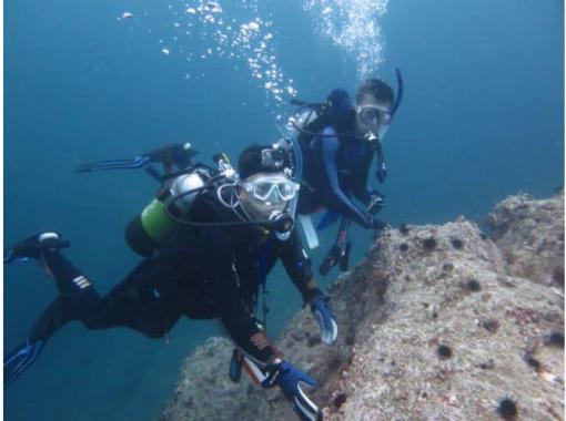 【北海道・積丹】安心のシュノーケリング講習つき体験ダイビング♪の紹介画像